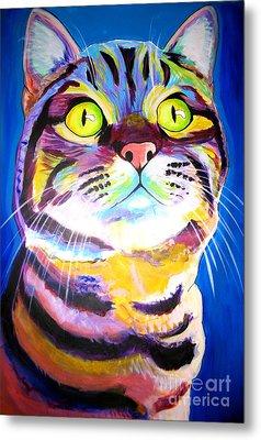 Cat - Akiko Metal Print by Alicia VanNoy Call
