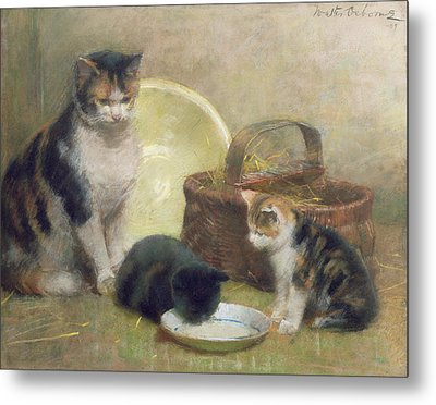 Cat And Kittens Metal Print by Walter Frederick Osborne