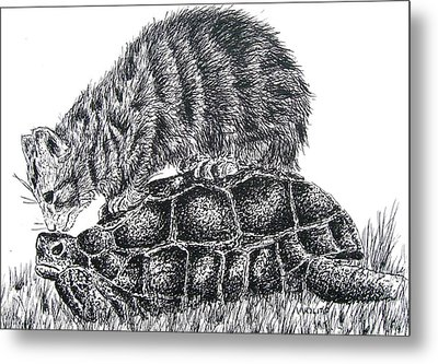 Cat And Turtle Metal Print