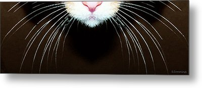 Cat Art - Super Whiskers Metal Print by Sharon Cummings