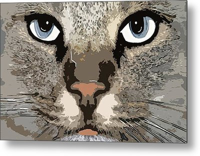 Metal Print featuring the photograph Cat by Cynthia Powell