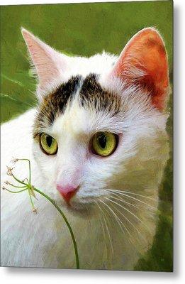 Cat Enjoying The Garden Metal Print by Menega Sabidussi