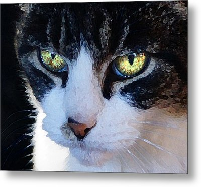 Metal Print featuring the digital art Cat Eyes by Jana Russon
