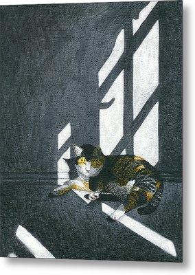Cat In Empty Room Metal Print by Carol Wilson