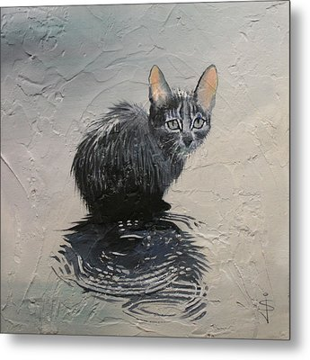 Cat In The Rain Metal Print by Jan Szymczuk