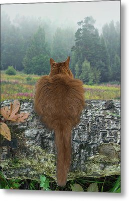 Cat In The Wild Metal Print by Vladimir Kholostykh