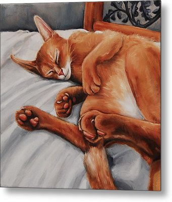 Cat Nap Metal Print by Jean Cormier