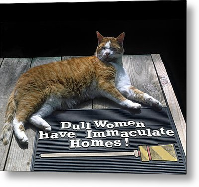 Metal Print featuring the photograph Cat On Dull Women Mat by Sally Weigand