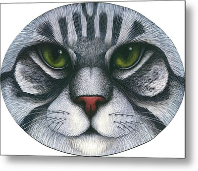 Cat Oval Face Metal Print
