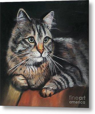 Cat Pastel Drawing Metal Print by Maja Sokolowska