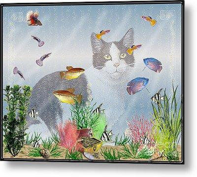 Cat Watching Fishtank Metal Print by Terri Mills