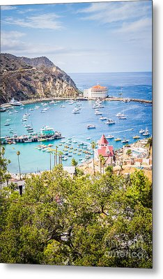 Catalina Island Avalon Bay Vertical Photo Metal Print