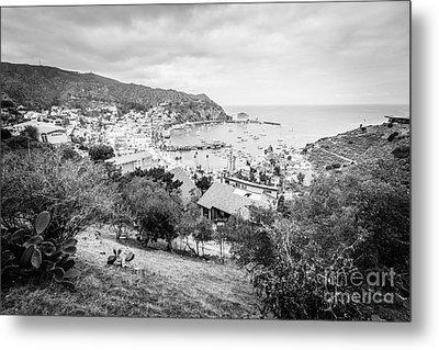 Catalina Island Avalon California Black And White Photo Metal Print