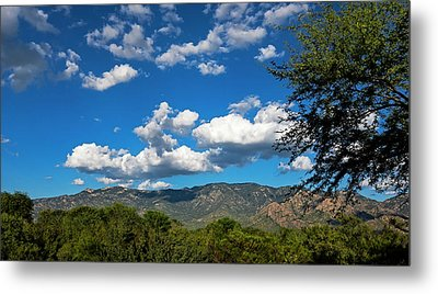 Metal Print featuring the photograph Catalina Mountains H48 by Mark Myhaver