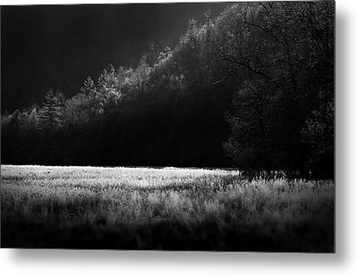 Cataloochee Morning Metal Print