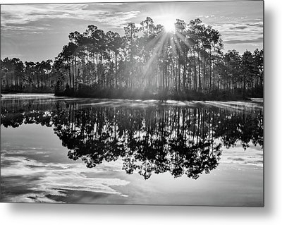 Catch The Sun Metal Print by Jon Glaser