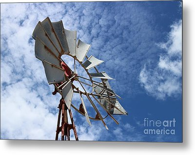 Metal Print featuring the photograph Catching The Breeze by Stephen Mitchell