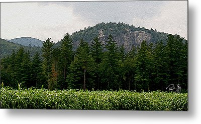 Cathedral Ledge North Conway Nh Metal Print by Paul Gaj