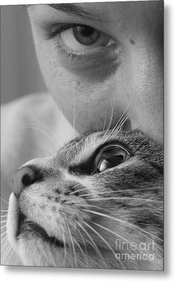 Cat's Eyes Metal Print by Michael Canning