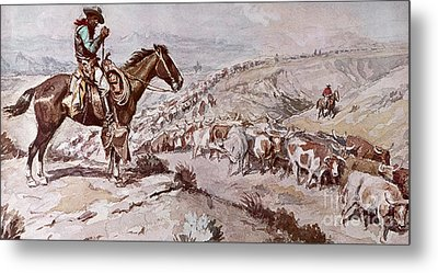 Cattle Drive Metal Print by Charles Marion Russell