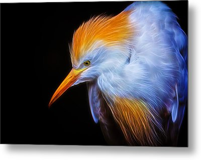 Cattle Egret Electrified Metal Print by David Gn