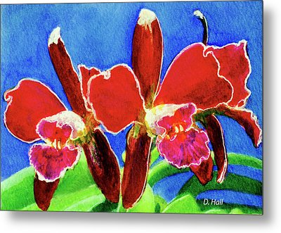 Cattleya Orchids Flowers #215 Metal Print by Donald k Hall