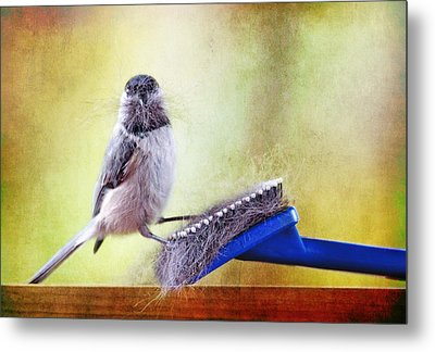 Caught In The Act Metal Print by Trina  Ansel