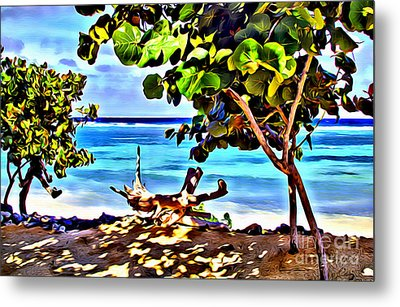 Cayman Cove Metal Print by Carey Chen
