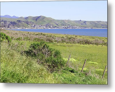 Metal Print featuring the photograph Cayucos Coastline - California by Art Block Collections