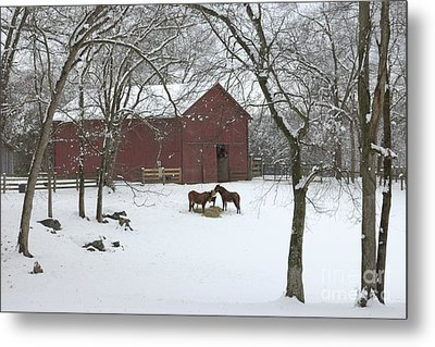 Cedarock Park In The Snow Metal Print by Benanne Stiens