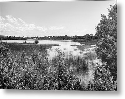 Metal Print featuring the photograph Cemetary Point Boardwalk by Howard Salmon