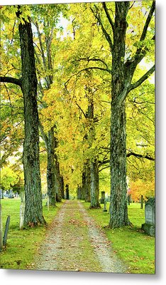 Metal Print featuring the photograph Cemetery Lane by Greg Fortier