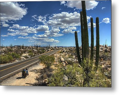 Center Of The Baja Metal Print by Rich Beer