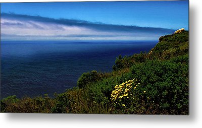 Central Coast Beach 3 Metal Print by Joseph Hollingsworth