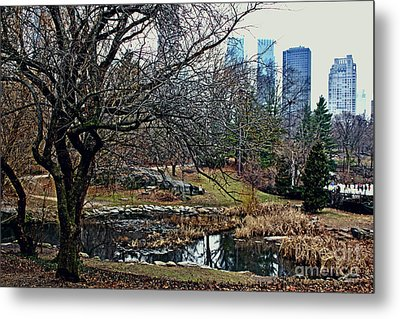 Central Park In January Metal Print
