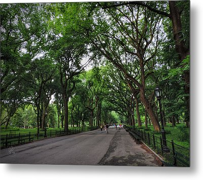 Central Park Mall 001 Metal Print by Lance Vaughn