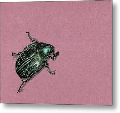 Chaf Beetle Metal Print by Jude Labuszewski