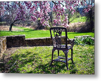 Chair In The Garden Under A Blooming Magnolia Tree Metal Print by George Oze