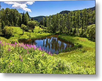 Chairi Lake Metal Print by Evgeni Dinev