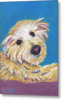 Metal Print featuring the painting Chance by Jamie Frier
