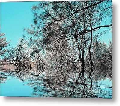 Metal Print featuring the photograph Chaos  by Elfriede Fulda