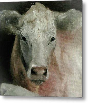 Charolais Cow Painting Metal Print
