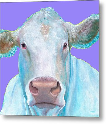 Charolais Cow Painting On Purple Background Metal Print by Jan Matson