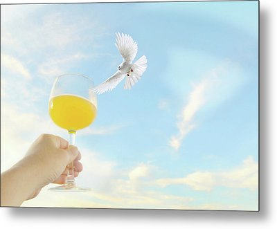 Peaceful Celebration Metal Print by Diana Angstadt
