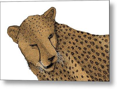 Cheetah Metal Print by Karl Addison