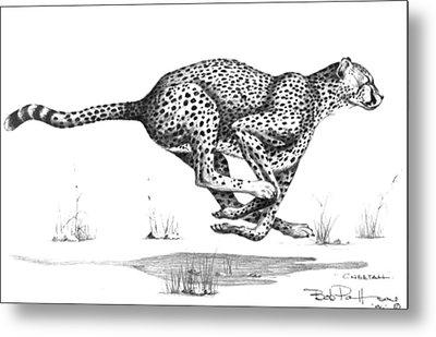 Cheetah On The Kill Metal Print by Bob Patterson