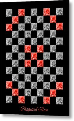 Chequered Rose Metal Print