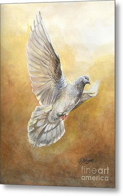 Cher Ami  Metal Print by Callie Smith