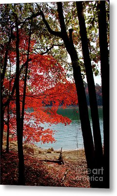 Metal Print featuring the photograph Cherokee Lake Color by Douglas Stucky