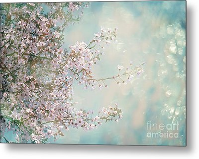 Metal Print featuring the photograph Cherry Blossom Dreams by Linda Lees